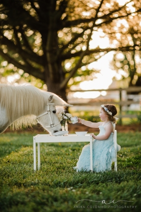 child sitting at a table in a field having a tea party with a unicorn