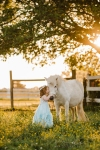 toddler in a farm in Richmond, VA facing away from the camera in a field of buttercups while kissing a white unicorn