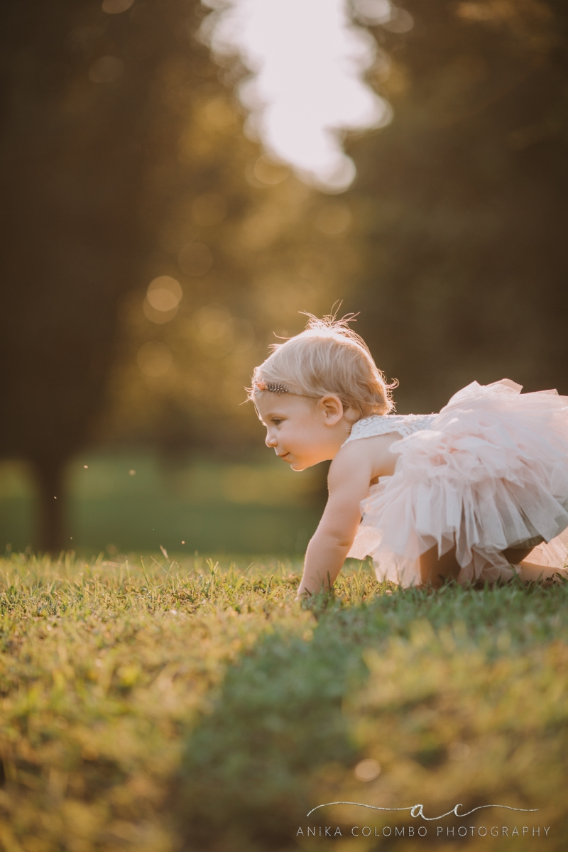toddler crawling across the grass wearing pink tutu and headband