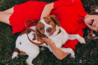 Anika Colombo Photography pet session in Richmond VA